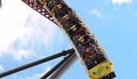 Karirku, rollercoasterku? atau?
